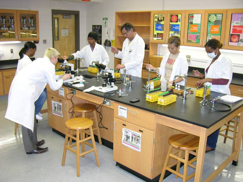 A group of six people running experiments around a lab table